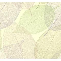 透けている葉っぱの背景 ベクター素材