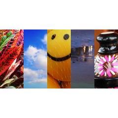 個性溢れる5つの写真セット