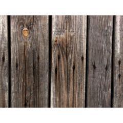 高画質な古木のテクスチャ素材
