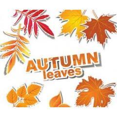 ステッカー風の秋の紅葉 ベクター素材