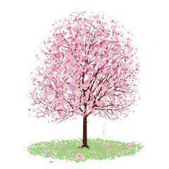 素敵すぎる春の桜!桃色桜がキレイ! ベクター素材